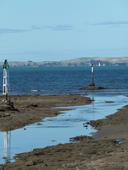 Milford Estuary Access Tidal Sill Info Milford Cruising Club Inc